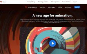 Animation Kolkata