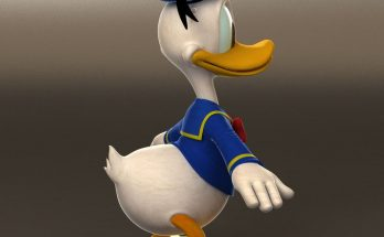 Donald Duck Best Animation Institute Kolkata